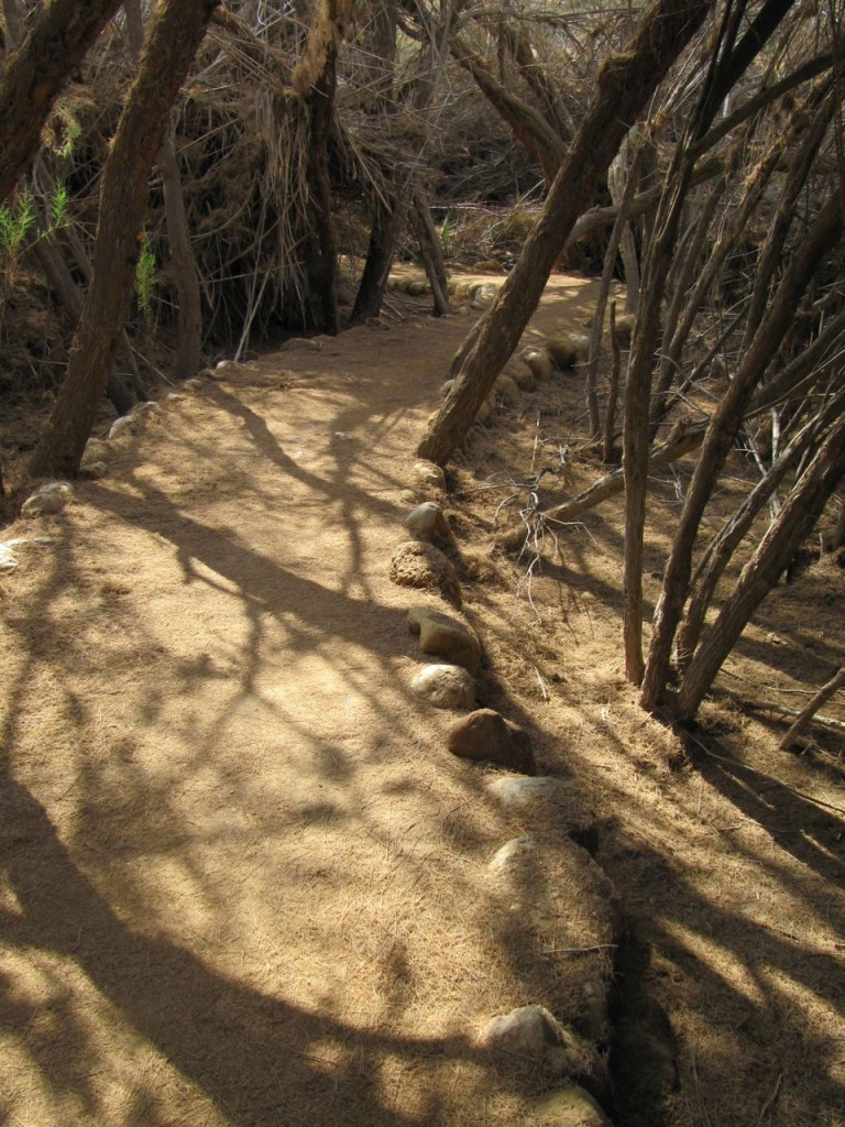 Path - Bethany, Jordan.
